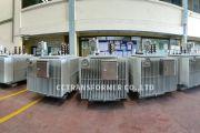 Project Tr.2500kVA. 23kV. 800V. Dy11